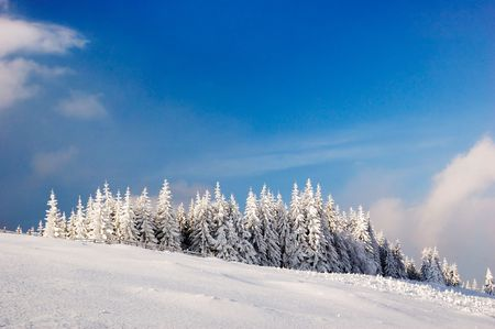 Winter landscape in mountains Carpathians, Ukraine and a valley with huts Stock Photo - 8071565