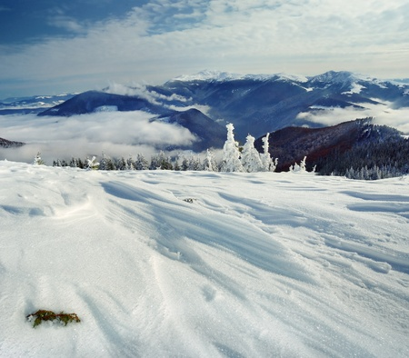 Winter landscape with snow in mountains Carpathians, Ukraine photo
