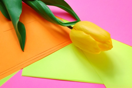 clr: Three yellow tulips on a multi-coloured background