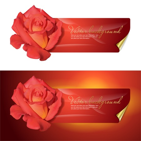 background for design with a red rose. Vettoriali