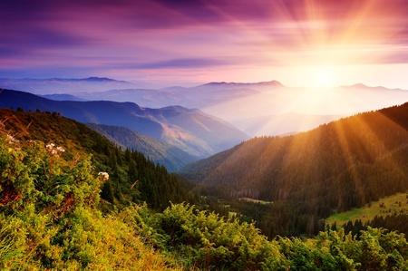Paysage d'été dans les montagnes avec le soleil
