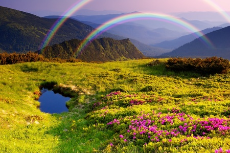 Summer landscape in mountains with Flowers, a rainbow and lake