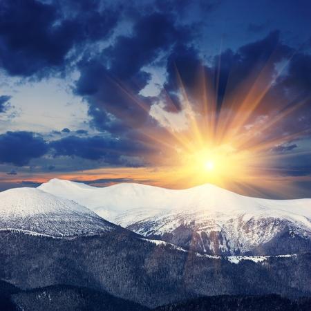 sunrises: Winter landscape with fur-trees and fresh snow. Ukraine, Carpathians
