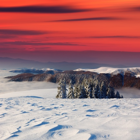 Winter landscape on a sunset. Mountains Carpathians, Ukraine  Stock Photo - 11158452