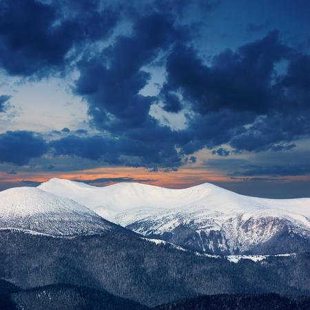 sunsets: Winter landscape with fur-trees and fresh snow. Ukraine, Carpathians
