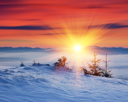 Winter landscape on a sunset. Mountains Carpathians, Ukraine  Imagens