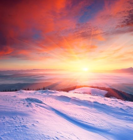 Winter landscape with a sunset. Ukraine, the Carpathian mountains. photo