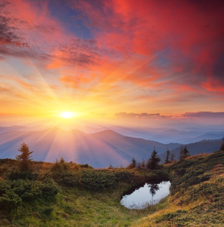 Landscape in the mountains with the sunset. Ukraine, the Carpathian mountains Banco de Imagens