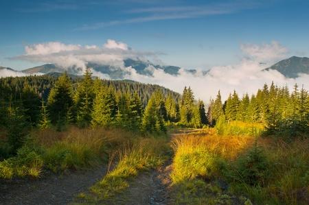 Morning landscape with clouds. Ukraine, the Carpathian mountains photo