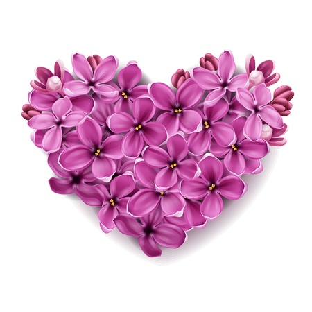Flowers of a lilac in the form of a heart. An illustration on a theme of Valentines day.