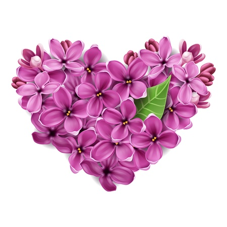 Flowers of a lilac in the form of a heart. An illustration on a theme of Valentines day Ilustração