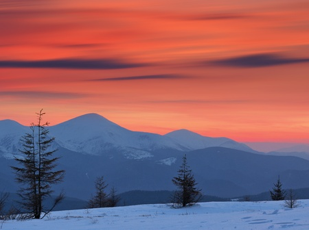 Winter landscape in the mountains at sunset with red sky. Ukraine, Carpathian Mountains, the ridge Chernogora photo