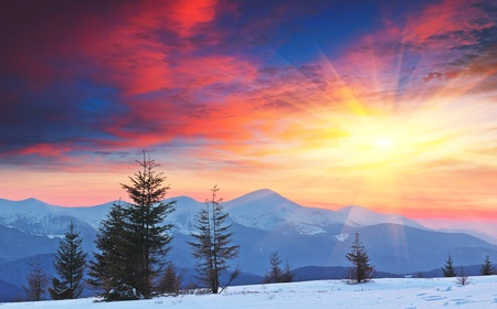 sunsets: Winter landscape in the mountains at sunset with red sky. Ukraine, Carpathian Mountains, the ridge Chernogora