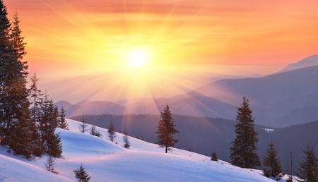 christmas landscape: Winter landscape on a sunset. Mountains Carpathians, Ukraine  Stock Photo