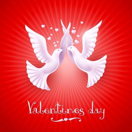 Two white doves on a red background  illustration of Valentine Vector