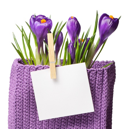 Vase with flowers and saffron sheet for text  Template for design of the spring theme photo