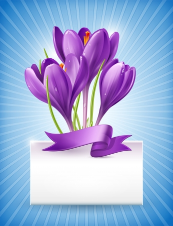 Vector illustration  Bouquet of spring flowers of crocuses