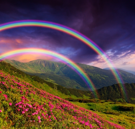 Mountain landscape with a rainbow over flowers