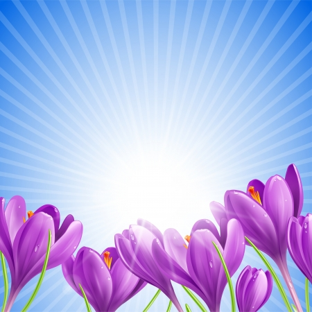 Beautiful spring flowers on sunny sky background Illustration