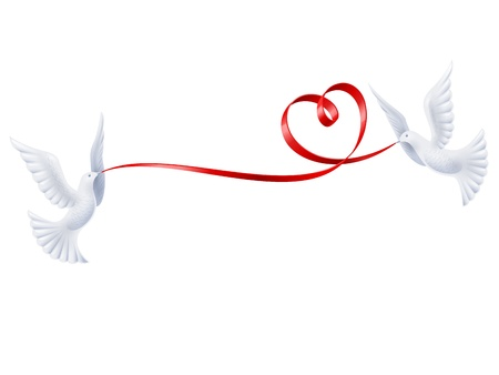 Pair white doves with red ribbon in the shape of heart.   Vector