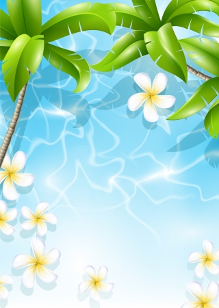 Frangipani flowers in the sea water under palm leaves  Tropical design Vector