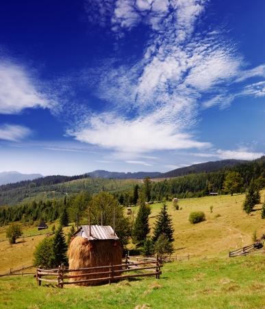 farmyard: Landscape of mountain village a bright sunny day