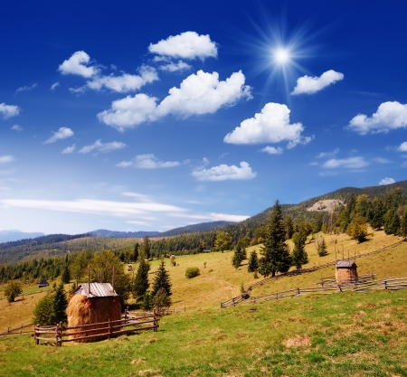 backwoods: Summer landscape in mountains with agriculture