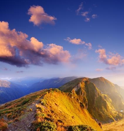 Matin fantastique dans les montagnes Ensoleillé paysage de montagnes des Carpates, Ukraine, Europe Banque d'images