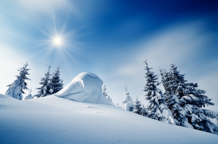 Winter landscape on a sunny day in a mountain forest  Ukraine, Carpathian Mountains Archivio Fotografico