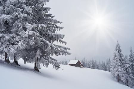 snow scenes: Wooden cottage in the mountains  Winter landscape  Carpathians, Ukraine