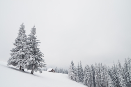 Winter landscape with house hunters in the mountains  Carpathians, Ukraine photo