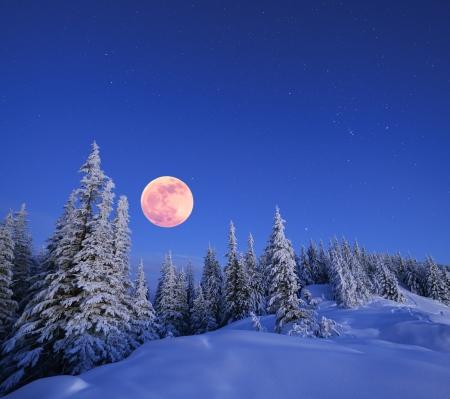 luz de luna: Paisaje de invierno en las montañas en la noche Una luna llena y un cielo estrellado Cárpatos, Ucrania