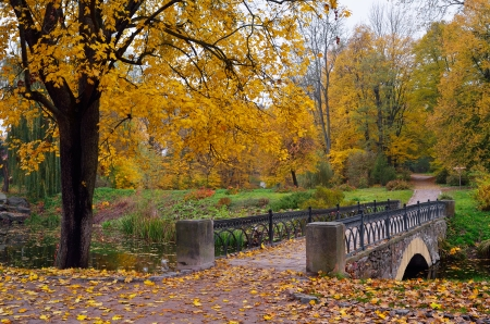 Autumn scenery in the park with a bridge over the river