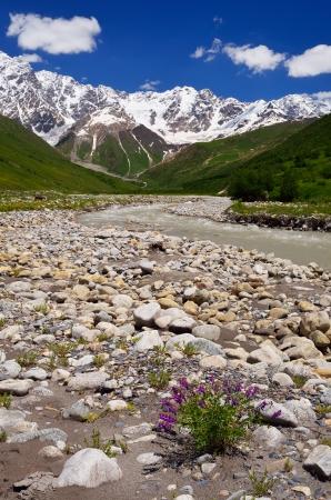 shkhara: Mountain Valley  Shkhara Ridge Mountains, Georgia, Caucasus Stock Photo