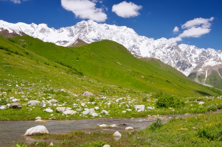 shkhara: Summer landscape with river under snow-covered mountain  Shkhara Mountain, Georgia, the Main Caucasian Ridge