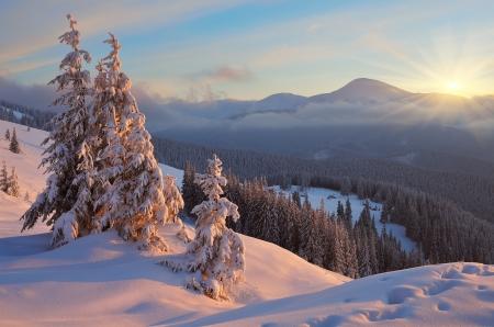Lever de soleil coloré dans les montagnes en hiver Beau paysage dans les Carpates, Ukraine matin, l'Europe Vue du Mont Goverla Banque d'images - 24164822