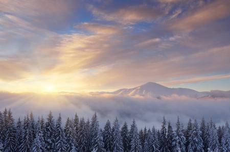 christmas scenic: Fantastic sunrise in the mountains in winter  Carpathians, Ukraine, Europe Stock Photo