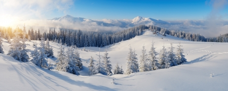 Winter panorama of mountains on a sunny day  Carpathians, Ukraine