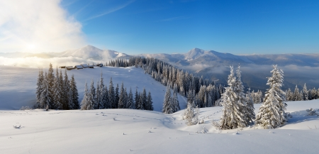 Winter panorama of mountain scenery in the morning  First sunlight  Carpathians, Ukraine, Europe