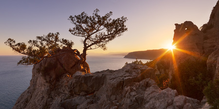Rays of the setting sun in a mountain forest  Evening view of the Cape from the sea  Southern coast of Crimea, Ukraine, Europe photo
