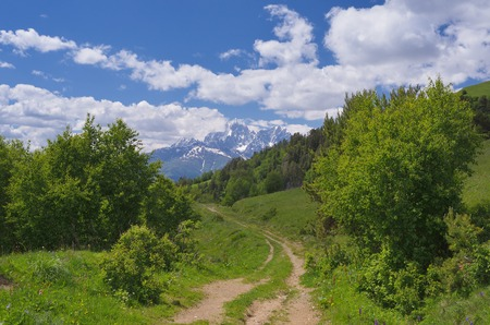 svan: Sunny day in the mountains of Georgia  Landscape with dirt road in the mountains  Svaneti Caucasus