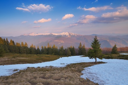 early spring snow: Spring landscape with the last snow  Carpathian mountains, Ukraine