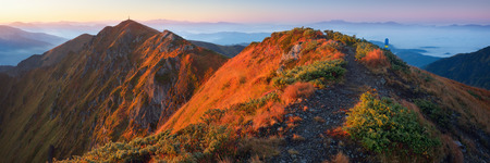 Morning landscape at dawn  Mountain panorama with the warm light of the rising sun  Carpathians, Ukraine, Europe photo