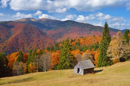 Autumn landscape with colorful forest  Hut in the mountains  Sunny Day photo