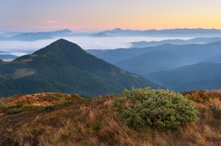Delicate state of nature in the mountains  Beautiful landscape at dawn  Carpathian mountains, Ukraine, Europe photo