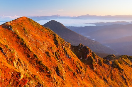 red grass: Autumn Landscape with red grass on the mountain slopes  Sunny morning in the mountains