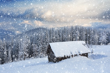 wooden hut: Wooden house in the mountains. Christmas scenery and fresh snow. Cloudy day. Carpathian mountains, Ukraine, Europe