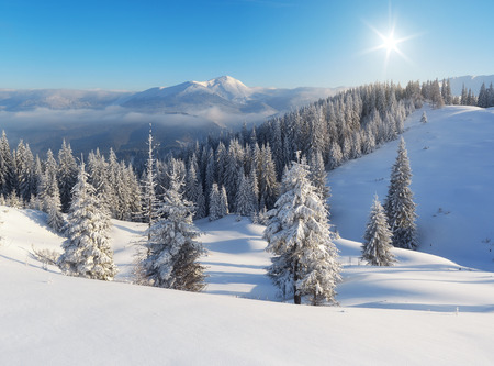 carpathian mountains: Winter landscape a clear frosty day in the mountains. Ukraine, Carpathian Mountains Stock Photo
