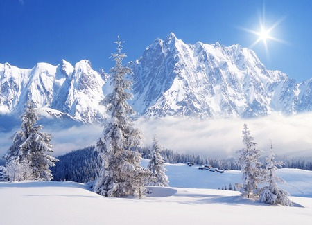 Morning in the mountains. Winter landscape with a fresh snow