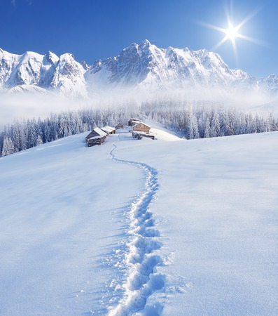 Trail to the mountain huts. Winter landscape in a fabulous location. Mountains Carpathians, Ukraine, Europe. Christmas view Archivio Fotografico